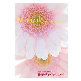 宮崎レディースクリニック 不妊治療アドバイス冊子 無料!