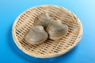【送料無料】ホンビノス貝 2kg 中サイズ