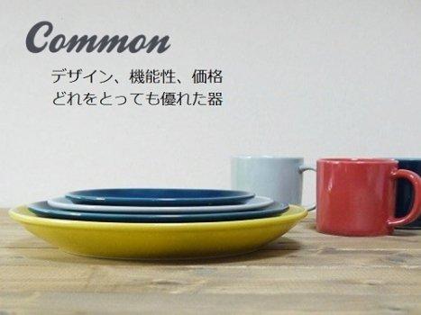 common プレート 540円〜