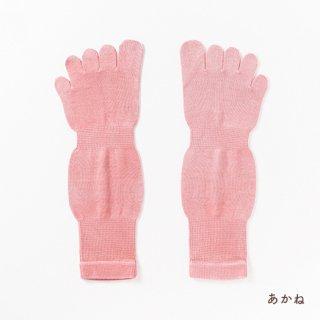 5本指くつした Mサイズ