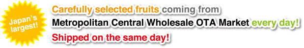 Japan's largest! Carefully selected fruits coming from Metropolitan Central Wholesale OTA Market every day! Shipped on the same day!