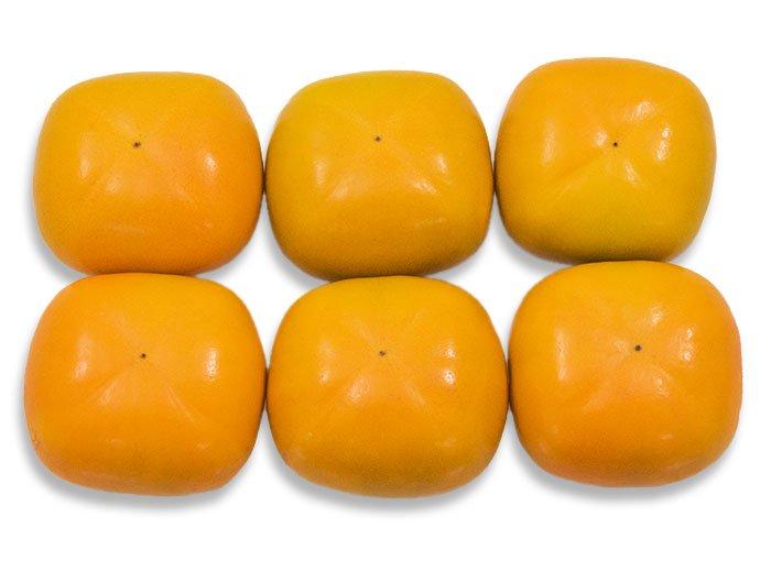 たねなし柿(刀根柿) <6個>平核無柿 / 糖度13度以上【今季終了】