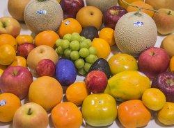 おまかせセット <10,000円><br>季節の旬なフルーツを詰め合わせ