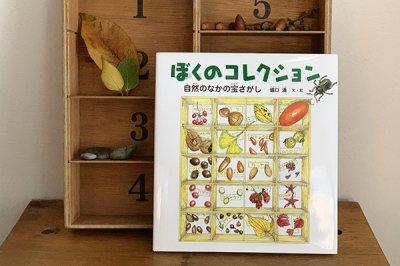 ぼくのコレクション 自然のなかの宝さがし 盛口 満/文・絵  (福音館書店)