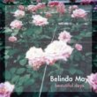 Belinda May(ベリンダ・メイ) - Beautiful Days[fastcut records]3trks.7インチ+DLコード.