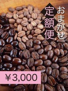 おまかせ定額便3,000円<img class='new_mark_img2' src='https://img.shop-pro.jp/img/new/icons33.gif' style='border:none;display:inline;margin:0px;padding:0px;width:auto;' />
