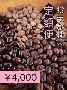 おまかせ定額便4,000円<img class='new_mark_img2' src='https://img.shop-pro.jp/img/new/icons33.gif' style='border:none;display:inline;margin:0px;padding:0px;width:auto;' />