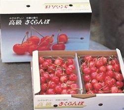 (予約販売)山形県東根産 紅秀峰 バラ詰め1kg