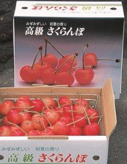 (予約販売)山形県東根産 紅秀峰 バラ詰め500g