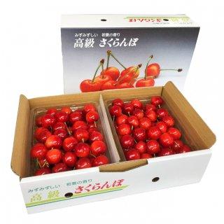 (予約販売)山形県東根産 佐藤錦 B バラ詰め1kg