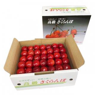 (予約販売)山形県東根産 佐藤錦 A-2 3段詰め500g