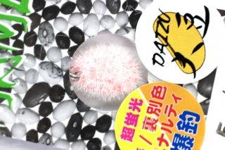 neo-STYLE MAME TAWASHI 1.6g #5 超蛍光版ペナルティー