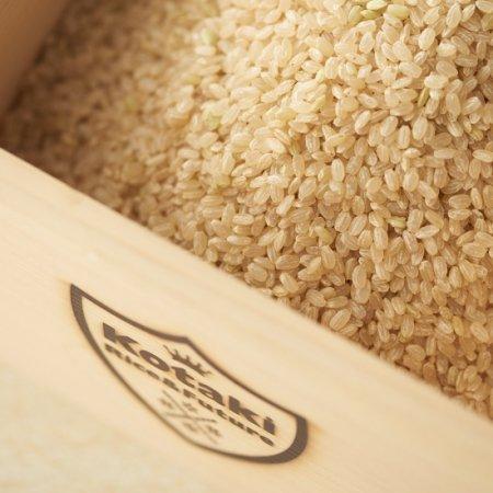 希少米!コタキホワイト玄米 2kg袋