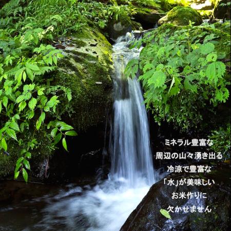 新米!コタキホワイトギフトボトル ラベルミックス 3本セット(期間限定出荷)