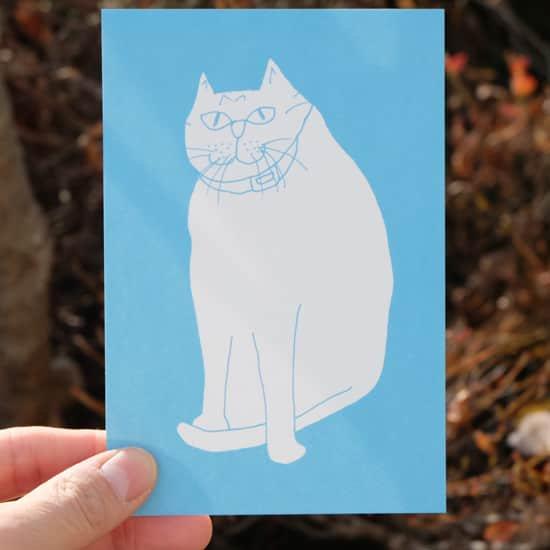 ポストカード|Blue Cat