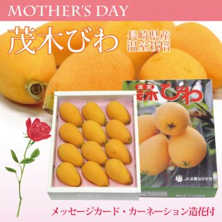 【母の日用】【ギフト】温室茂木びわ(母の日包装・カーネーション造花・メッセージカード付)