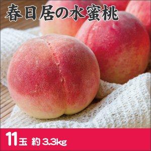 【お中元・夏の贈り物に】春日居の桃 11玉 (3.3kg) 【お届け期間 7月上旬〜8月上旬】