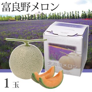 北海道 富良野メロン 赤肉 1玉