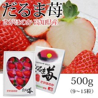 だるまいちご(高知県産さがほのか)500g【送料無料】