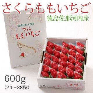徳島県産いちご「さくらももいちご」600g 化粧箱入【送料無料】