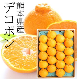 熊本県産デコポン 優品18-20玉(約5kg)