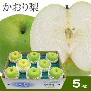 かおり梨 6〜8玉・5kg