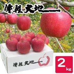 【送料無料】【12月のお届け】【お歳暮】青森・津軽大地乃会サンふじりんご2kg
