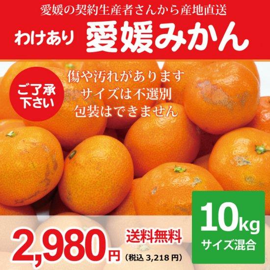 【わけあり】【送料無料】愛媛みかん10kg 2,980円