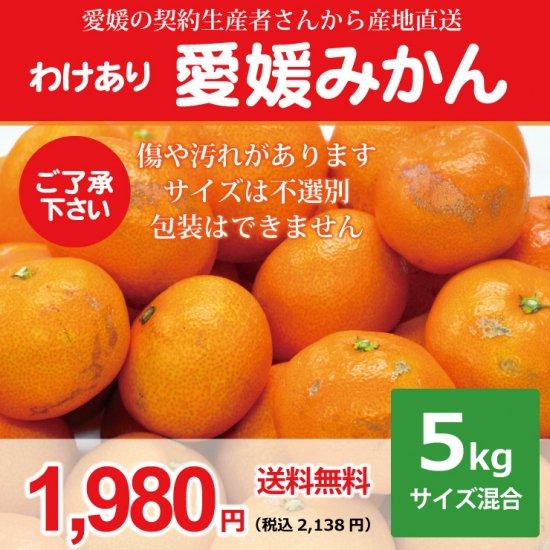 【わけあり】【送料無料】愛媛みかん5kg 1,980円