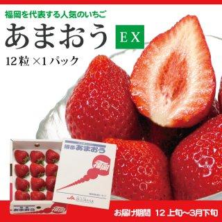 【送料無料】ギフト向けに最適な最上位等級 あまおうEX(エクセレント)1P