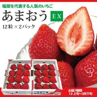 【送料無料】ギフト向けに最適な最上位等級 あまおうEX(エクセレント)2P