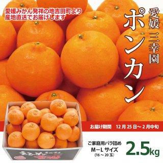 【1月のお届け】愛媛・三幸園薬師寺さんのポンカン2.5kg