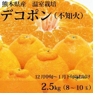 【12月1月のお届け】熊本県産温室デコポン2.5kg(8〜9玉)