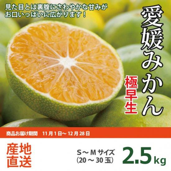 愛媛みかんの里・吉田町からお届け!三幸園薬師寺さんの極早生みかん 2.5kg