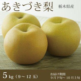 栃木のあきづき梨 5kg(9〜12玉)