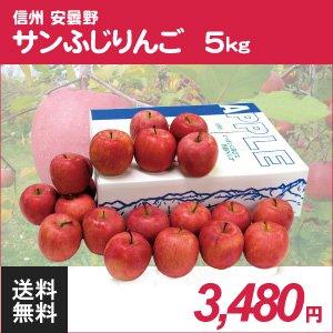 長野安曇野サンふじりんご5kg