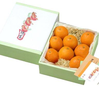 清見オレンジ(12玉)