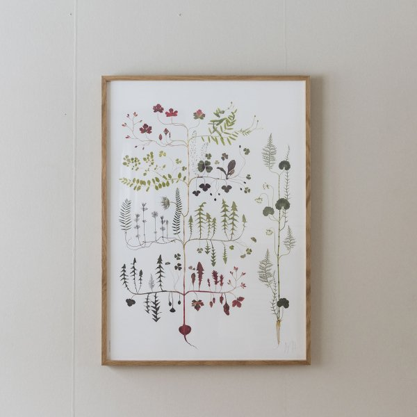 Poster Forest Tree 50×70cm