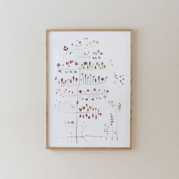 Poster Garden Tree 50×70cm