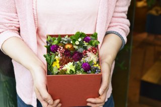 box flower : seasonal