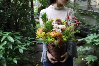 potted flower : seasonal【standard】