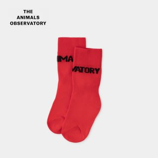 <img class='new_mark_img1' src='//img.shop-pro.jp/img/new/icons2.gif' style='border:none;display:inline;margin:0px;padding:0px;width:auto;' />the animals observatory ( TAO ) | WORM SOCKS SOCKS (red)