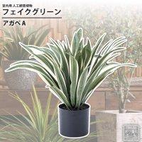 アガベA : フェイクグリーン 室内用 人工観葉植物 おしゃれ インテリアグリーン GRN-13 フェイクグリーン アガベ