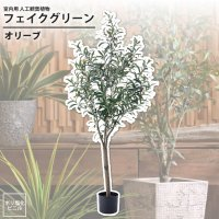 オリーブ : フェイクグリーン 室内用 人工観葉植物 おしゃれ インテリアグリーン GRN-17 フェイクグリーン オリーブ