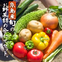 【福岡県糸島市】糸島産 旬の野菜盛り合わせセット