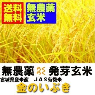 令和1年産 無農薬 楽々発芽玄米 金のいぶき 2kgx2袋 送料無料