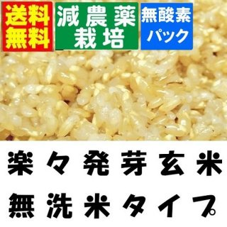 30年産 減農薬 楽々発芽玄米 4.5kgx1袋 送料無料