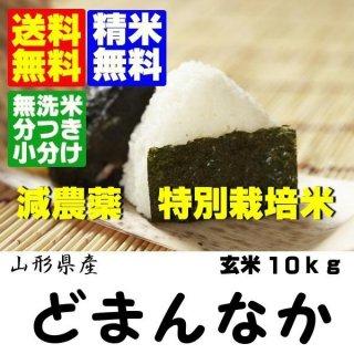 山形県飯豊町産 特別栽培米どまんなか玄米10kg
