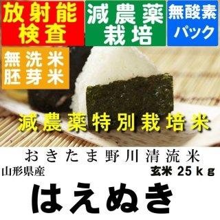 令和1年産 野川清流米 特別栽培米山形県産はえぬき 玄米25kg 精米・送料無料