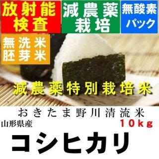 令和2年産 野川清流米特別栽培米 山形県産コシヒカリ 玄米10kg 精米・送料無料